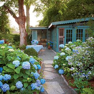 french_hydrangea_garden-m